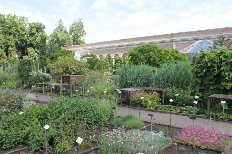 Top 10 groene hotspots in Leuven